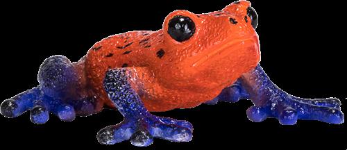 Mojo Wildlife - Pijlgifboomkikker 381016