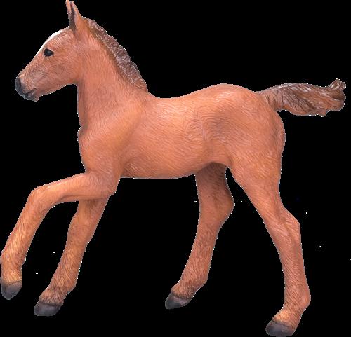 Mojo Horses - Arabisch Veulen Kastanje 381019