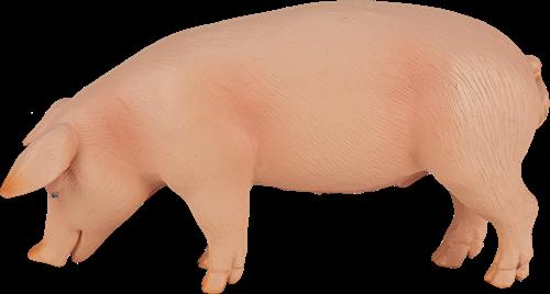 Mojo Farm - Varken (Zwijn) 387080