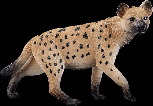 Mojo Wildlife - Hyena 387089