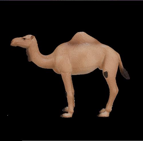 Mojo Wildlife - Arabische Kameel 387113