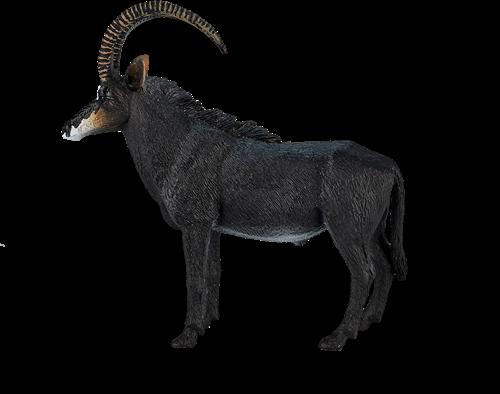 Mojo Wildlife - Sabelantilope 387145