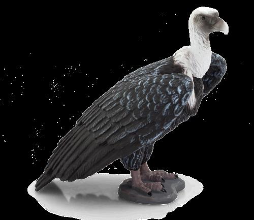 Mojo Wildlife - Vale Gier 387165