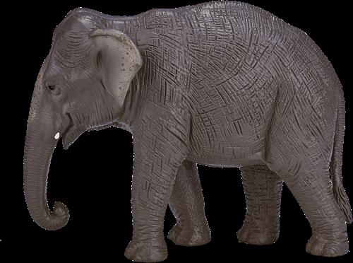 Mojo Wildlife - Aziatische olifant 387266