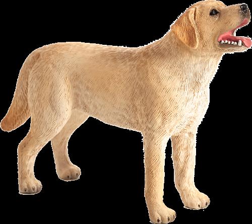 Mojo Pets - Labrador 387271
